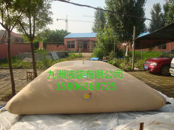 4出口国外枕型水袋