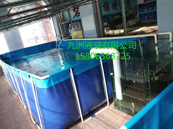 26锦鲤养殖池