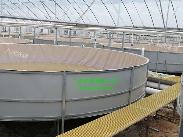 16 水产养虾池