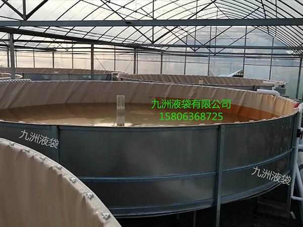 水产养虾池